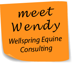 meet Wendy Wellspring Equine Consulting