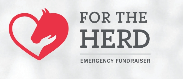 For the Herd-Emergency Fundraiser banner banner