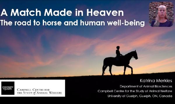 Merkies_Horse_Human_ISES poster