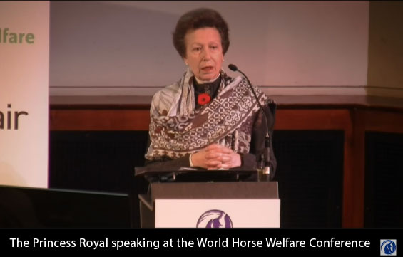 The Princess Royal at the World Horse Welfare 2015 conference