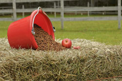 feed bucket on bale