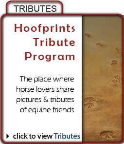 Hoofprints Tribute Program