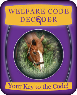 (button) Welfare Code Decoder