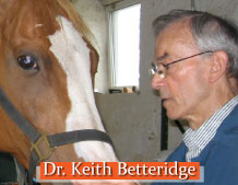 Dr. Keith Betteridge with horse