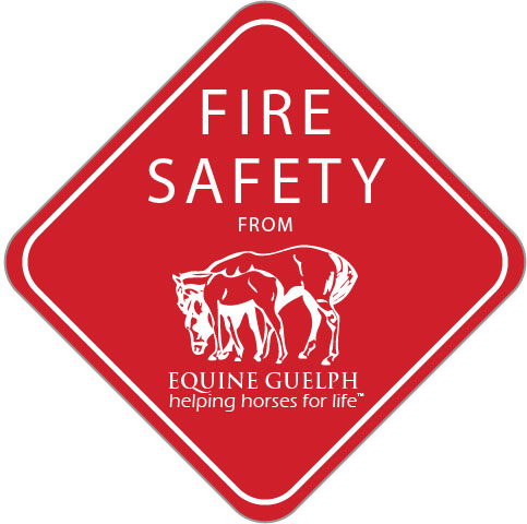 'Fire Safety Icon