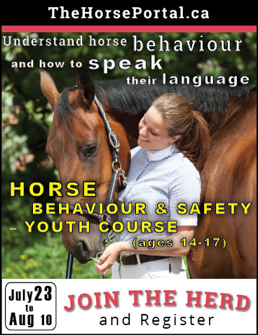 Horse Behaviour & Safety online course