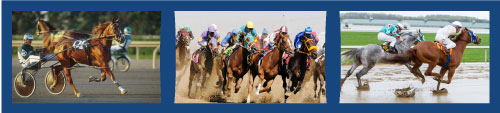 Ontario Racing Industry banner