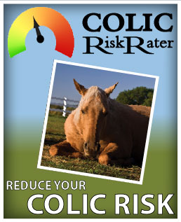 Colic Risk Rater Tool